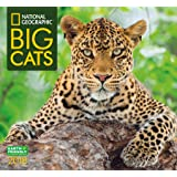National Geographic Big Cats 2018 Wall Calendar