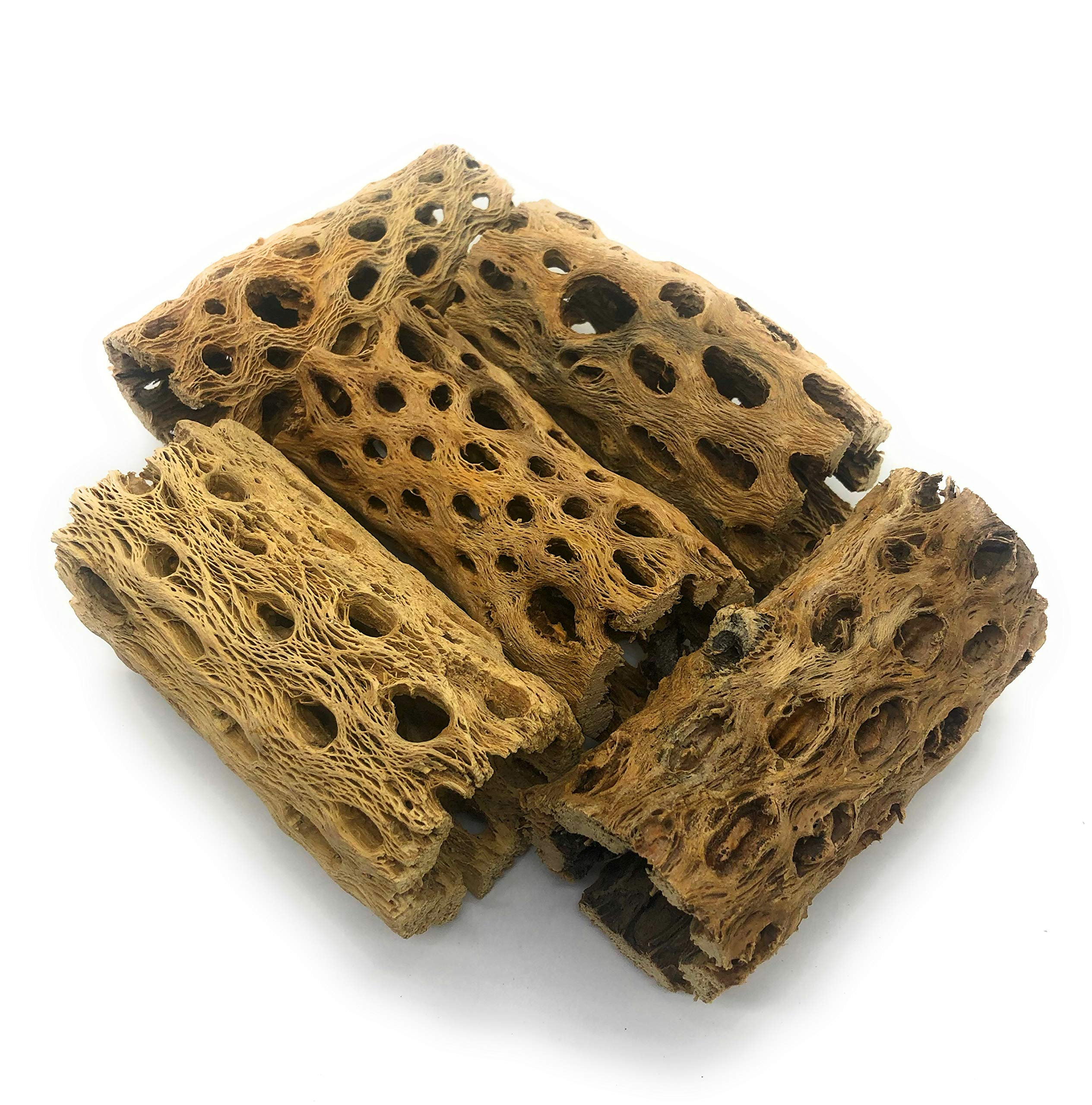 SubstrateSource ''Cholla Tubes Aquarium Driftwood Decoration 4 Inches (5 Pieces) by SubstrateSource