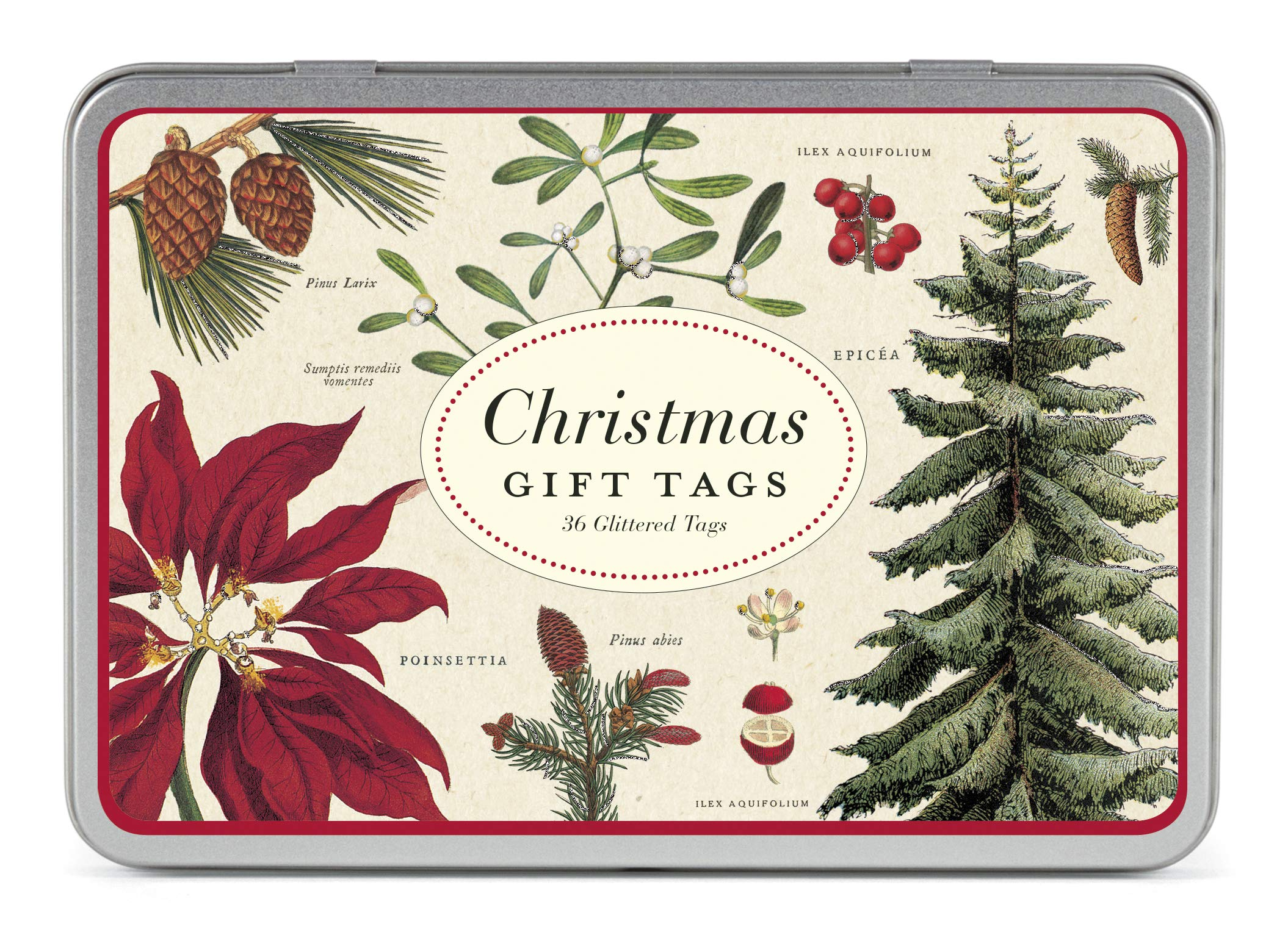 Cavallini Papers & Co., Inc. Christmas Bontanica Gift Tag