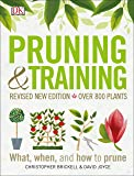 Pruning and Training, Revised New