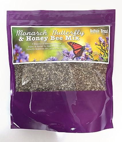 Amazon com : Monarch Butterfly & Honey Bee Pollinator Flower