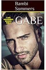 GABE: A Hart Investigations Romance. Book 3 Kindle Edition