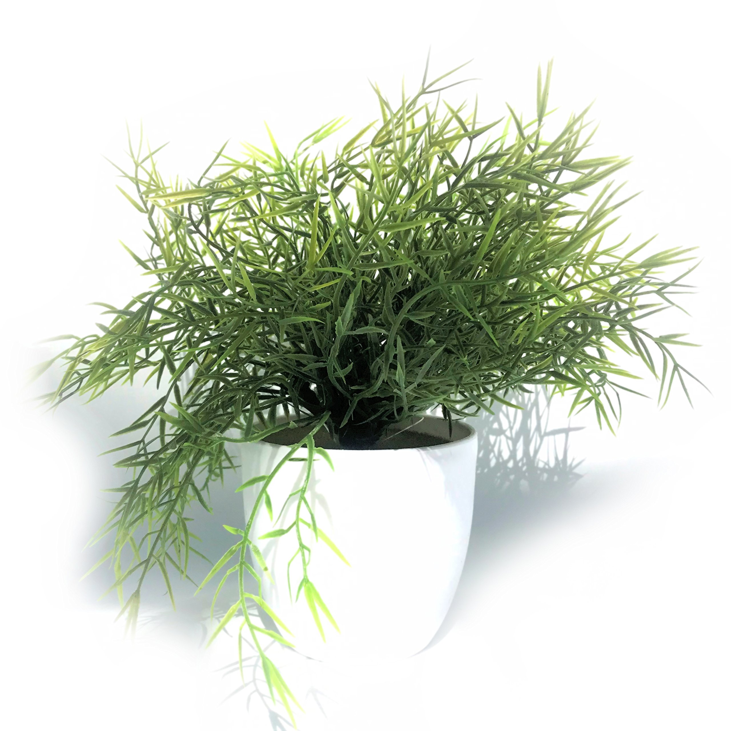 Whole House Worlds The Realistic Faux Baby Lemon Grass, Potted Plant, Houseplant, Kitchen, Lushly Leafed, White Pot, 6 Inches Diameter x 9 ¾ Tall, By by Whole House Worlds