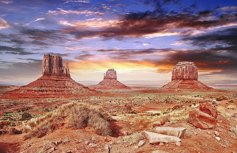 BannersNStands Reptile Habitat, Terrarium Background, Cool Desert Sky - (18x48) BNS