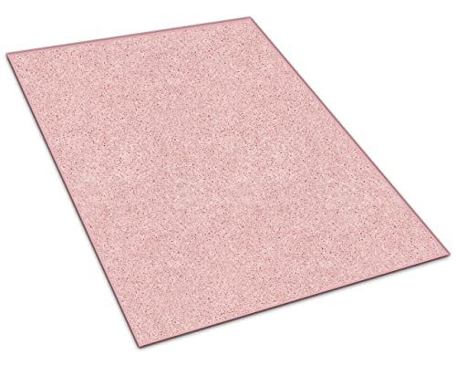 Koeckritz 3 X5 Oval Pink Kisses 25.5 oz 1 2 Thick Plush Cut Pile Indoor Carpet Area Rug