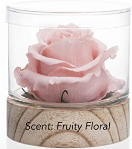 Home Scent 12oz Natural & Months Lasting Fragrance Roses Soothing Aromatherapy Gift Birthday Gifts Gifts for her. Living Room Decor Farmhouse Decor (Pale Pink/Scent Fruity Floral)