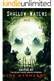 Shallow Waters Vol.2: A Flash Fiction Anthology