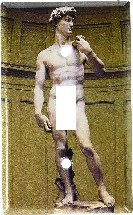 Art Plates Art Plates - Michelangelo's David Switch Plate - Single Toggle