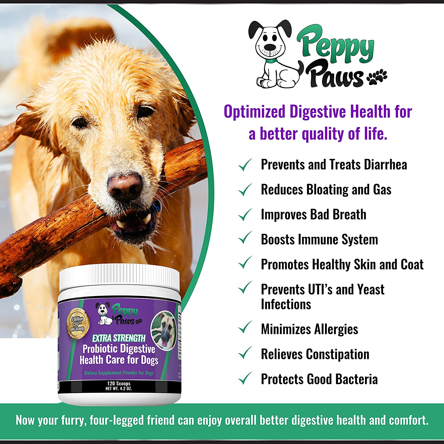 Amazon.com : Best Probiotics for Dogs with Acidophilus Improves Dog ... | Dog Food Allergy Bad Breath