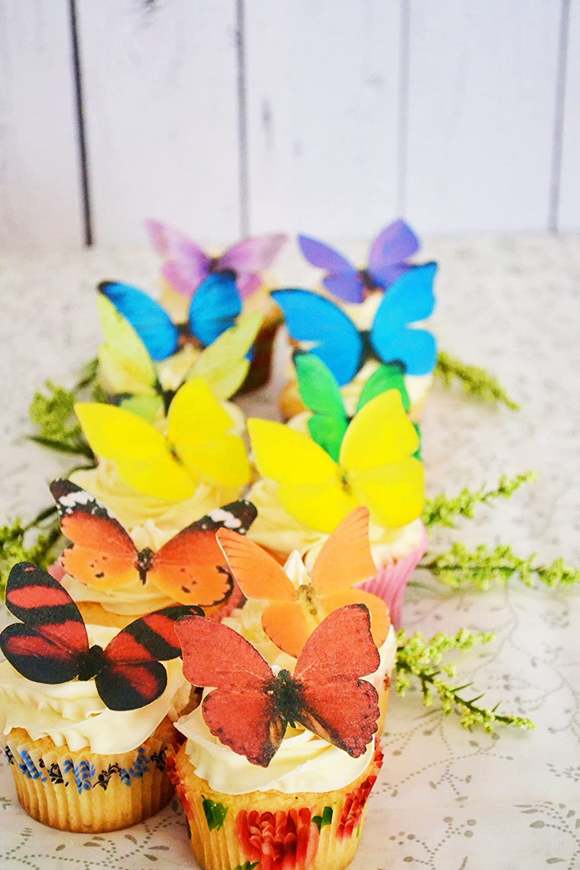 Amazon.com: Edible Butterflies © -Large Rainbow Variety Set of 12 ...