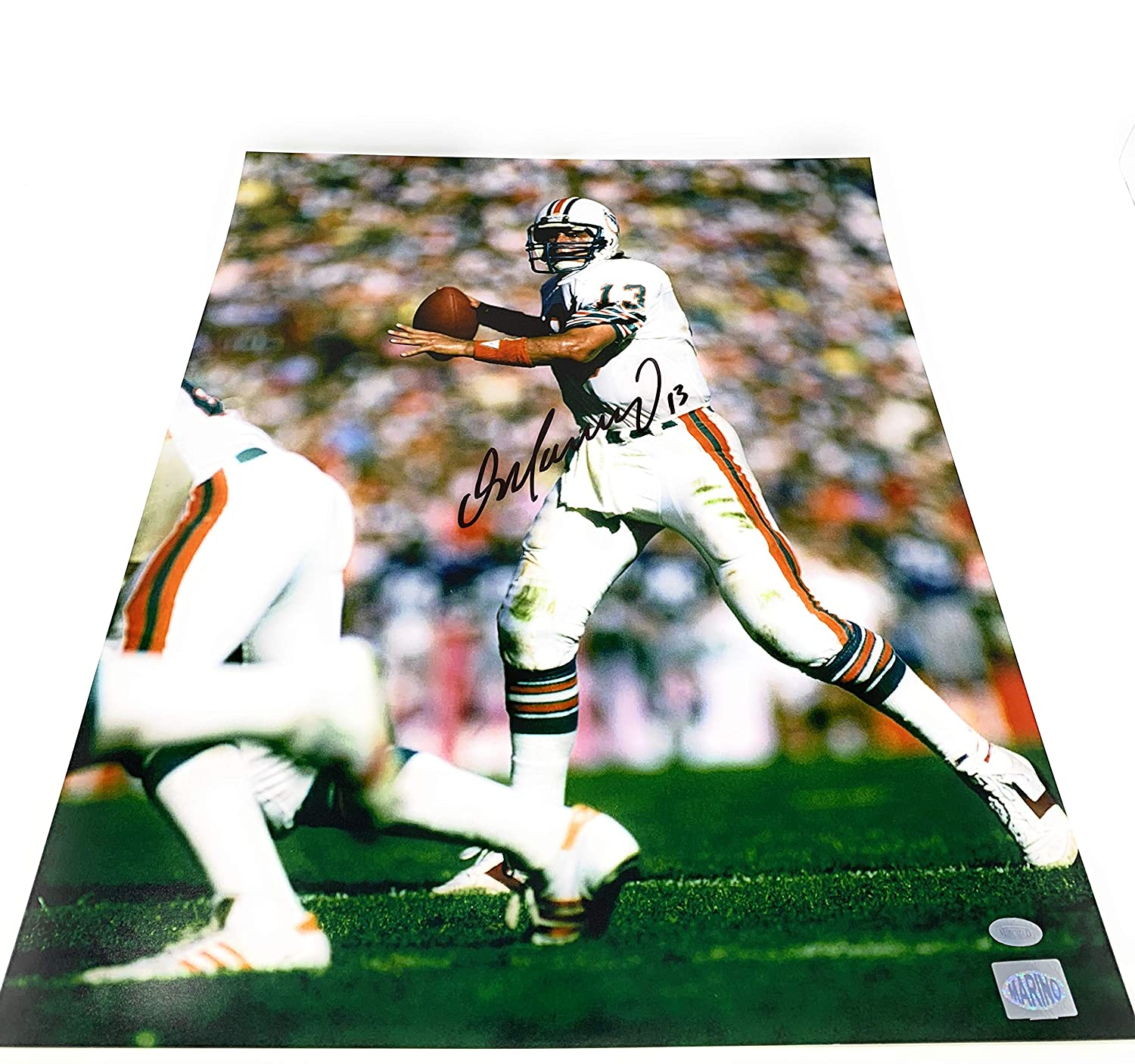 f505f4611d1 Dan Marino Miami Dolphins Signed Autograph 16x20 Photo Photograph Mounted  Memories Marino Player Hologram at Amazon's Sports Collectibles Store