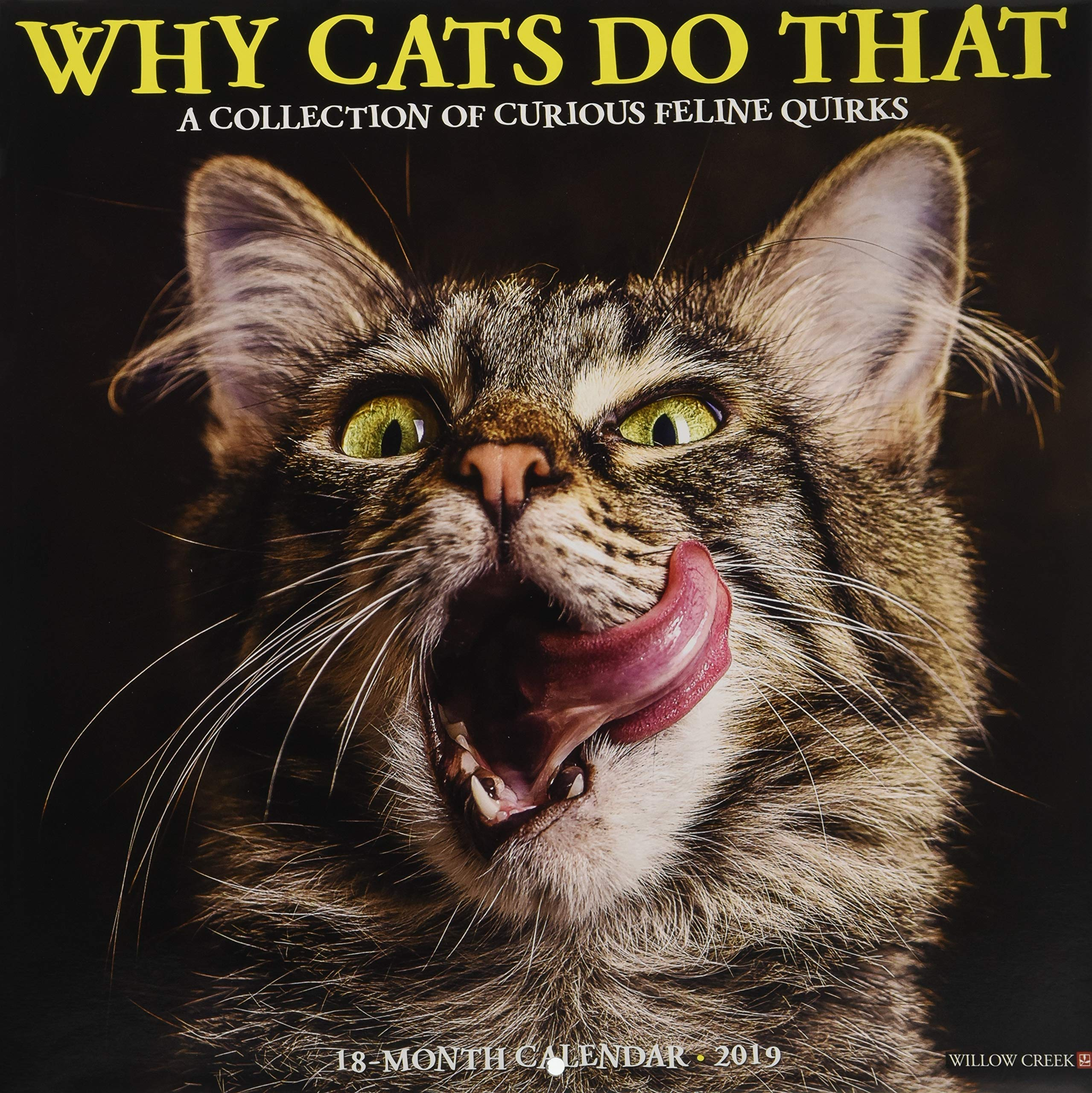 Why Cats Do That 2019 Wall Calendar PDF