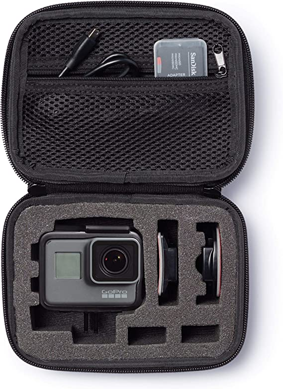 AmazonBasics Extra Small GoPro And Accessories Case - 6.5 x 5 x 2.5 Inches