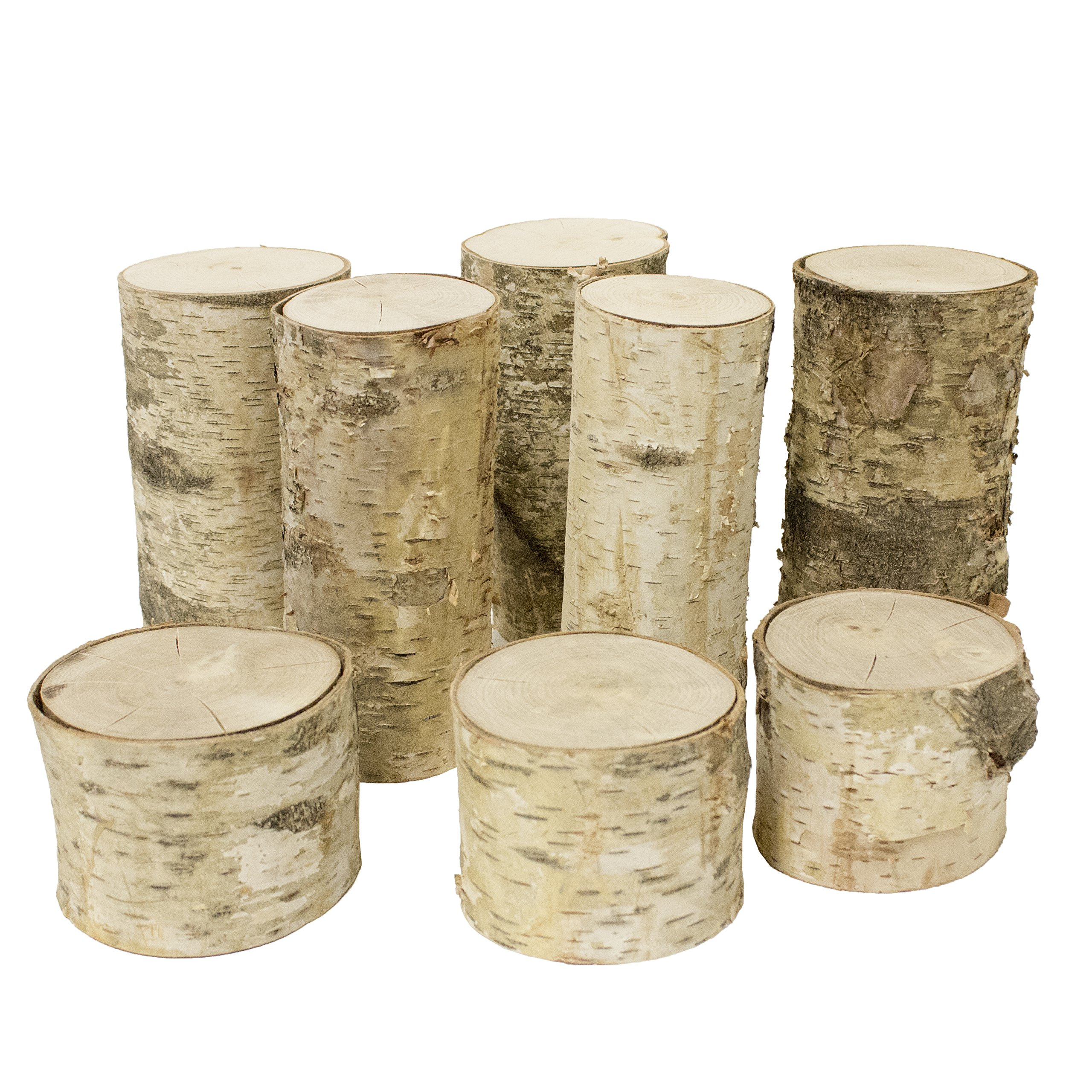 Walnut Hollow Mixed Assortment White Birch Pillars for Home Décor, Accent Pieces and Art & Craft Projects,  (8 pack)