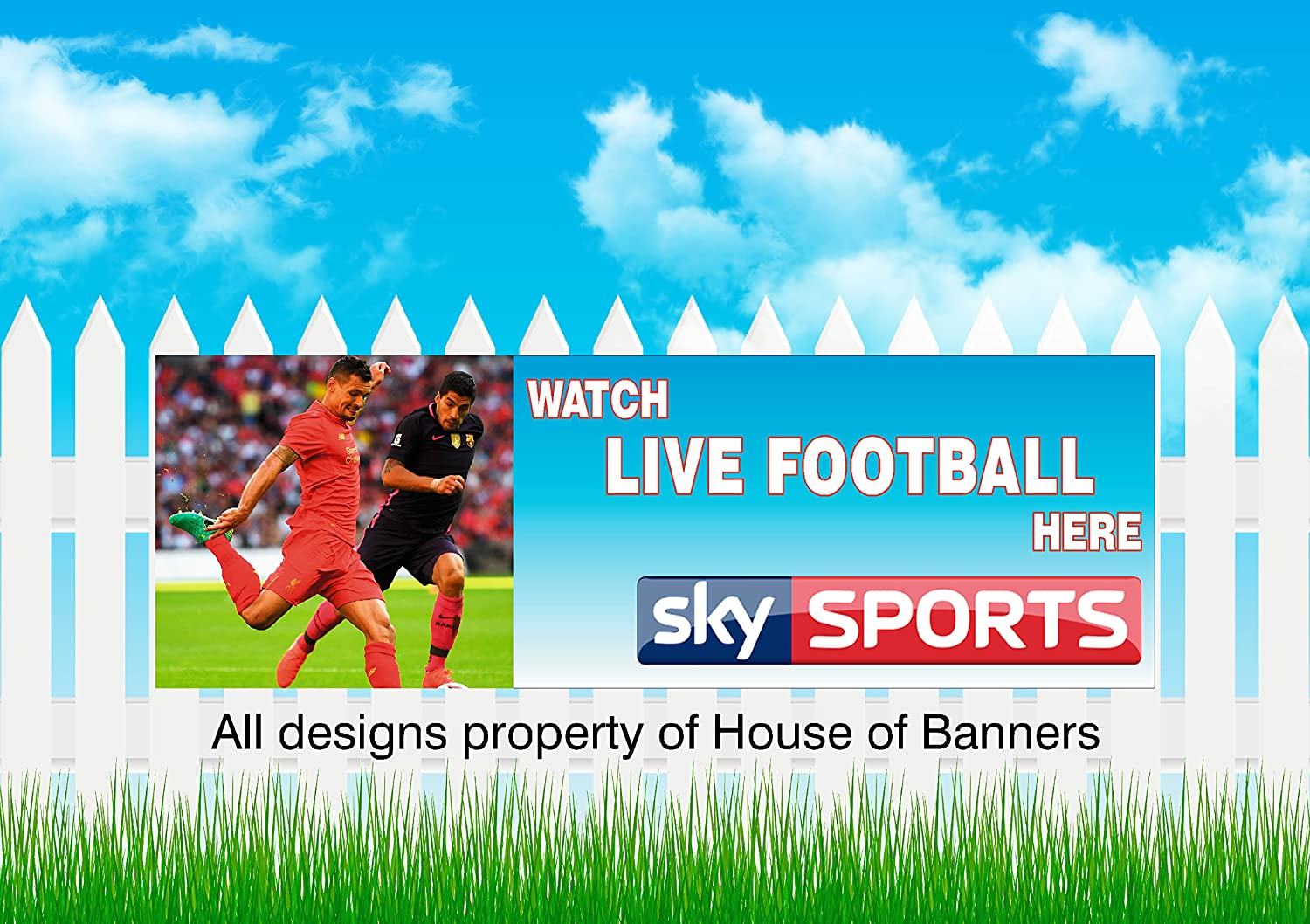 Sky Sports Pvc Banner Vinyl Advertising Printed Signs, Pub Banner,Outdoor/Indoor For Fence Or Garage Wall. 6x2ft house of banners