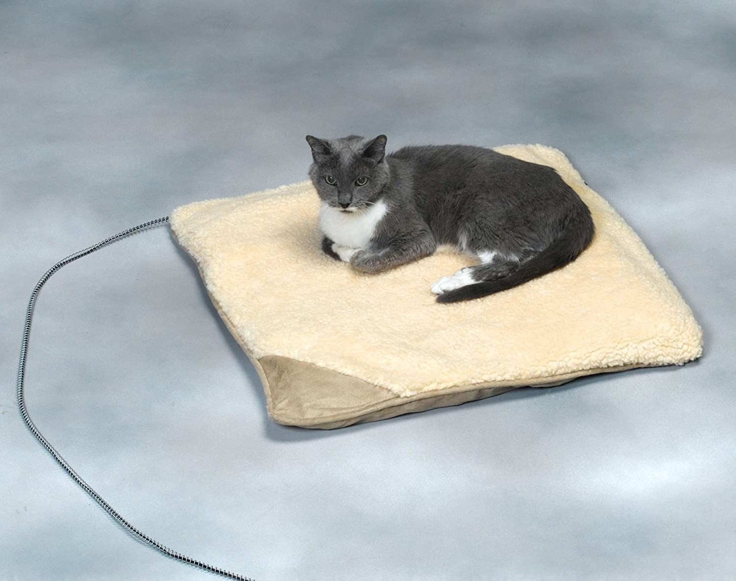 allied precision small heated pet bed bpz4c060