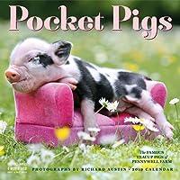Pocket Pigs Wall Calendar 2019: The Famous Teacup Pigs of Pennywell Farm