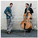 Bass & Mandolin