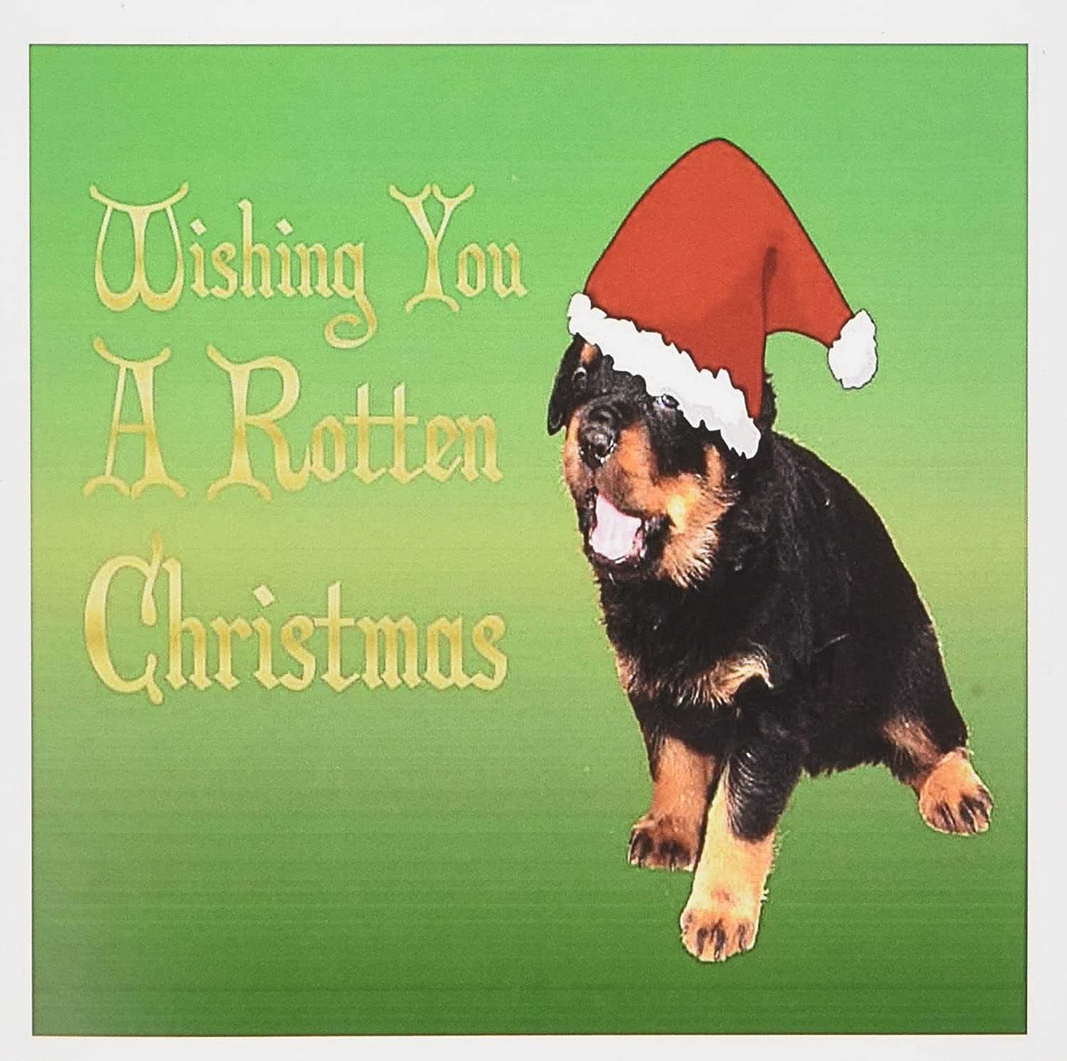 Amazon.com : 3dRose Set of 12 Greeting Cards, Rotten Christmas ...
