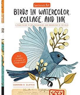 feathered friends 2020 wall calendar watercolor bird illustrations
