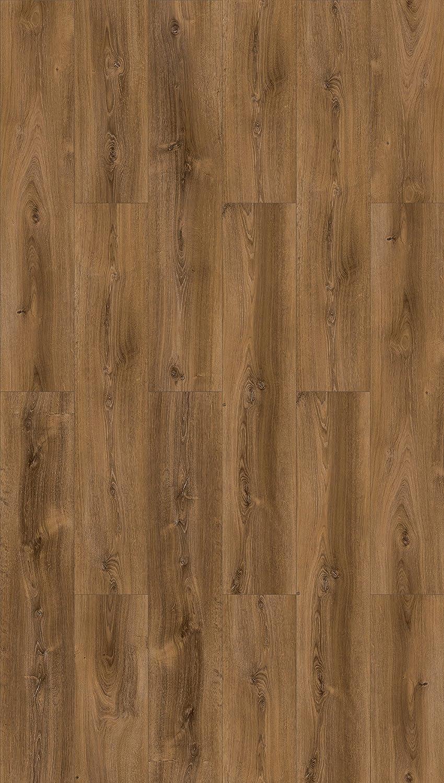 8 mm Parador Klick Laminat Bodenbelag Basic 600 Eiche Avant geschliffen Landhausdiele Naturstruktur Fuge 2,186m/² hochwertige Holzoptik hell braun//beige einfache Verlegung