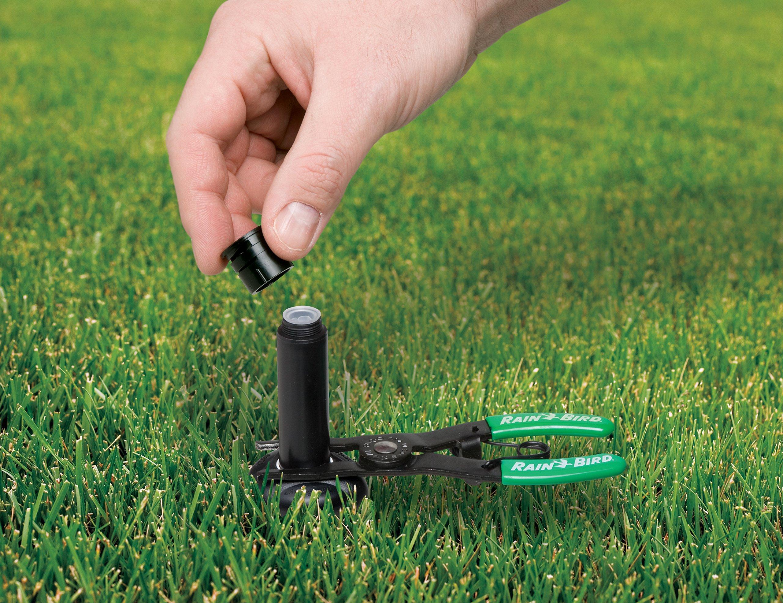 Rain Bird PTC1 Spray Head Pull-Up Tool for Pop-Up Sprinklers