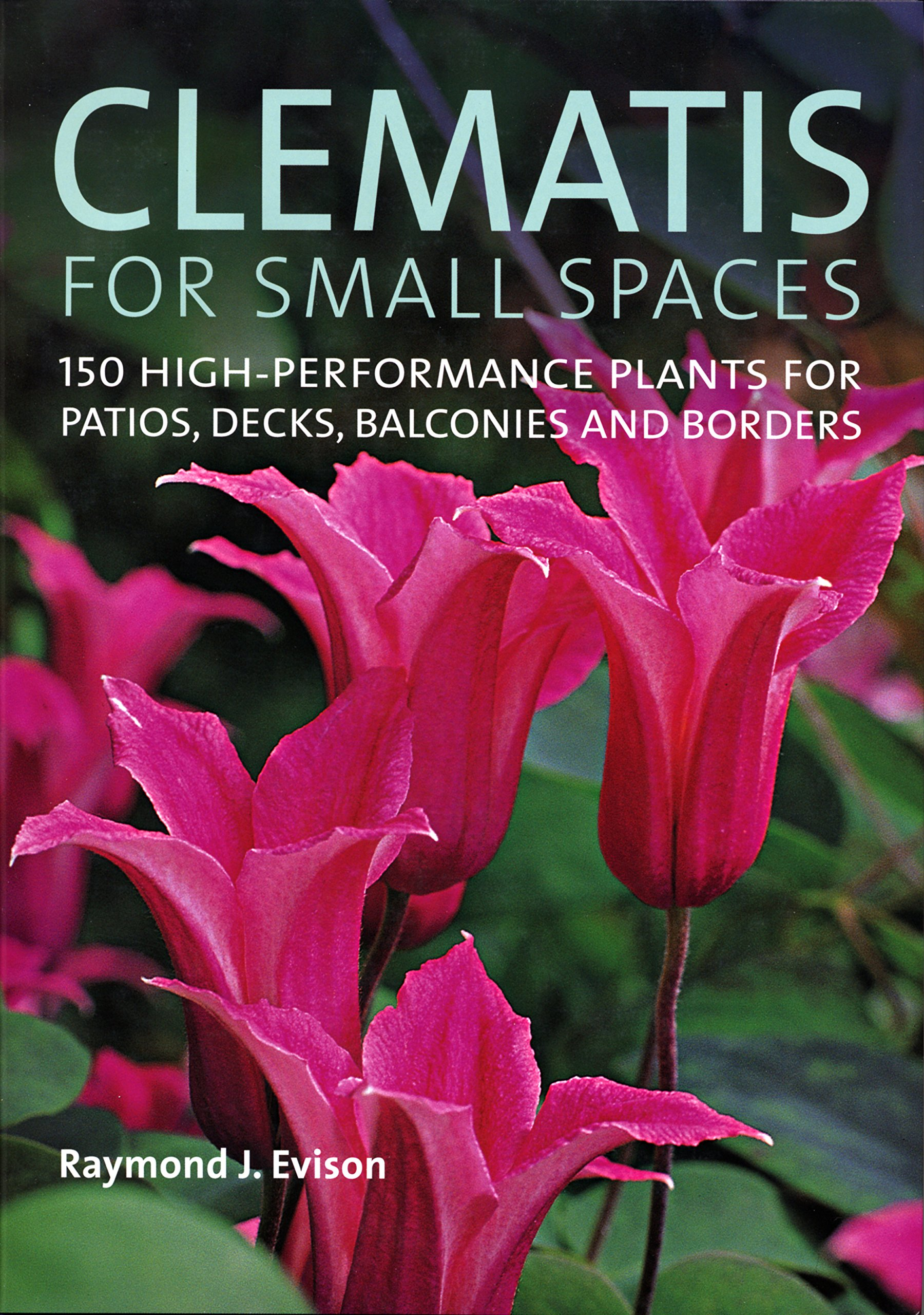 Clematis For Small Spaces: 150 High Performance Plants For Patios, Decks,  Balconies And Borders: Raymond Evison: 9780881928518: Amazon.com: Books
