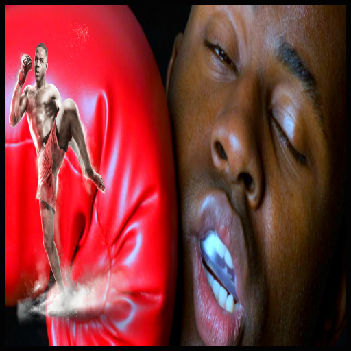 Boxing Fighter 2016