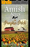 Amish Acres: The Pumpkin Patch