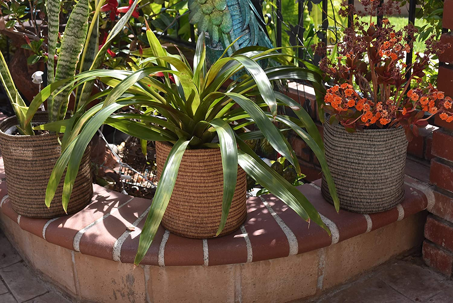Artisan Series Eco Pots Made from Fabric- Set of 3