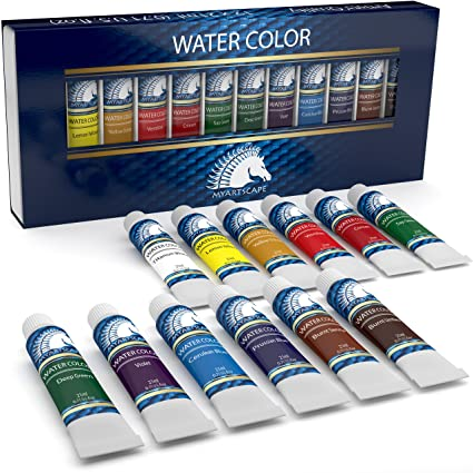 watercolor paint set artist quality paints 12 x 21ml vibrant colors rich pigments