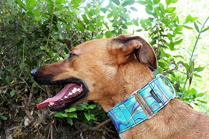 candyPet Collar Martingale para Perros - Modelo Ondas Azules (S ...