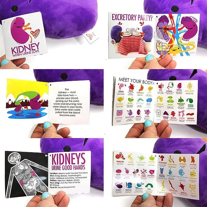 Amazon colossal kidney plush when urine love i heart guts amazon colossal kidney plush when urine love i heart guts series toys games ccuart Images