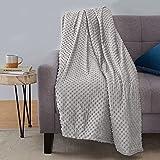 "Amazon Basics Weighted Blanket with Minky Duvet Cover - 20lb, 48x72"", Dark Grey/Grey"