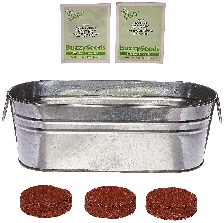 Amazon Buzzy Salad Windowsill Kit Garden Outdoor