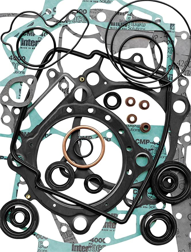 Winderosa Complete Gasket Kit w// Oil Seals 811881