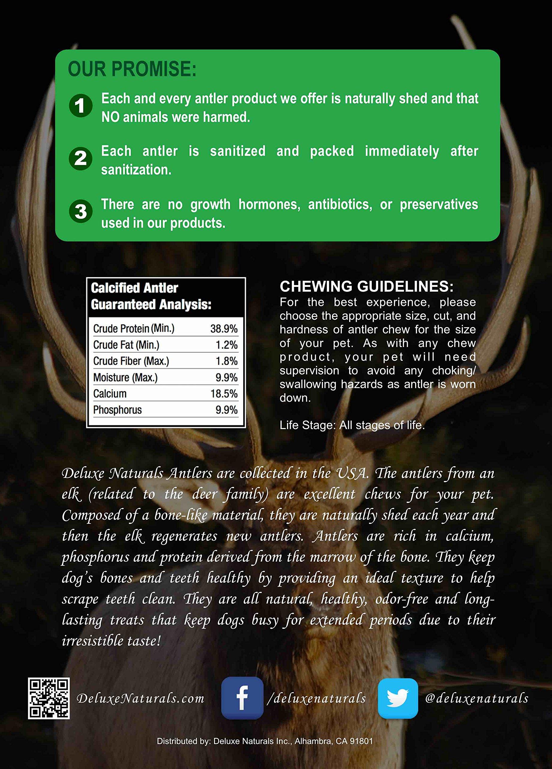 Deluxe Naturals Elk Antler Dog Chew, Split, Medium, 20-50 lb Dogs, 4 Piece by Deluxe Naturals (Image #6)