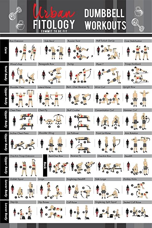 Urban Fitology Dumbbell Exercise Workout Poster Men Women