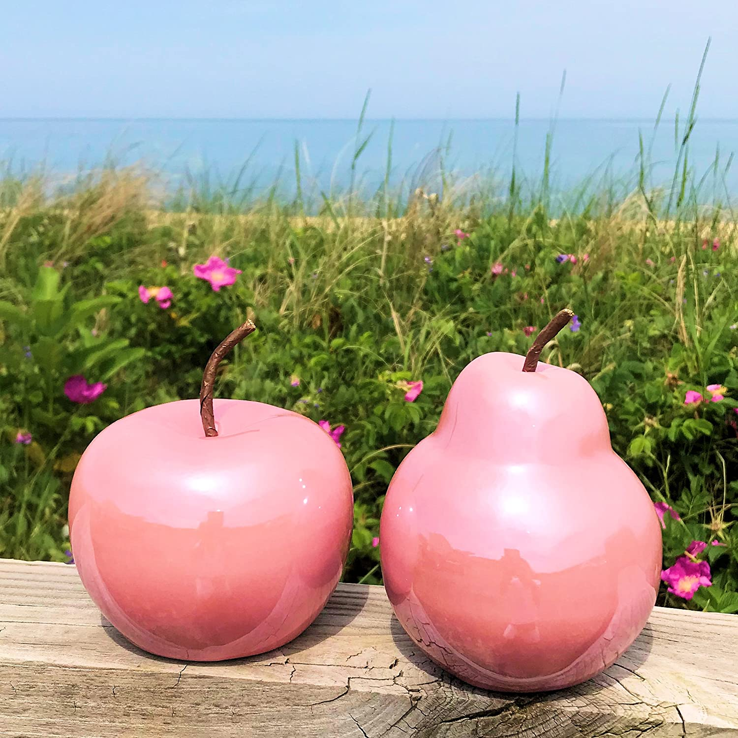 Bendable Stem Pink Each 4 Inches in Diameter WHW Whole House Worlds Hamptons Faux Apple and Pear Porcelain Counter Top Art 2.84 Set of 2 Ultra Bright Glaze
