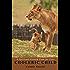 A Spiritual Growth Plan for Your Choleric Child (A Spiritual Growth Plan for Your Children Book 1)