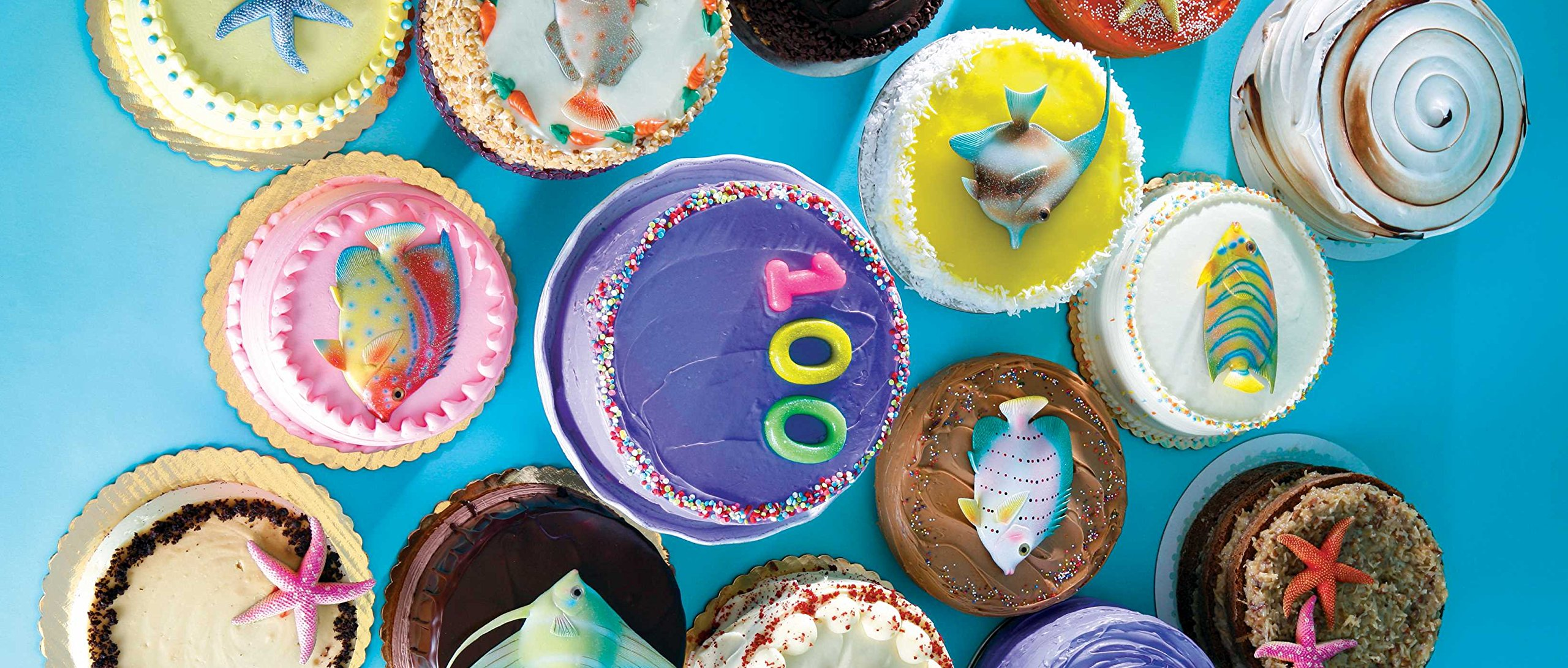 100 Days of Cake: Amazon.ca: Goldhagen, Shari: Books