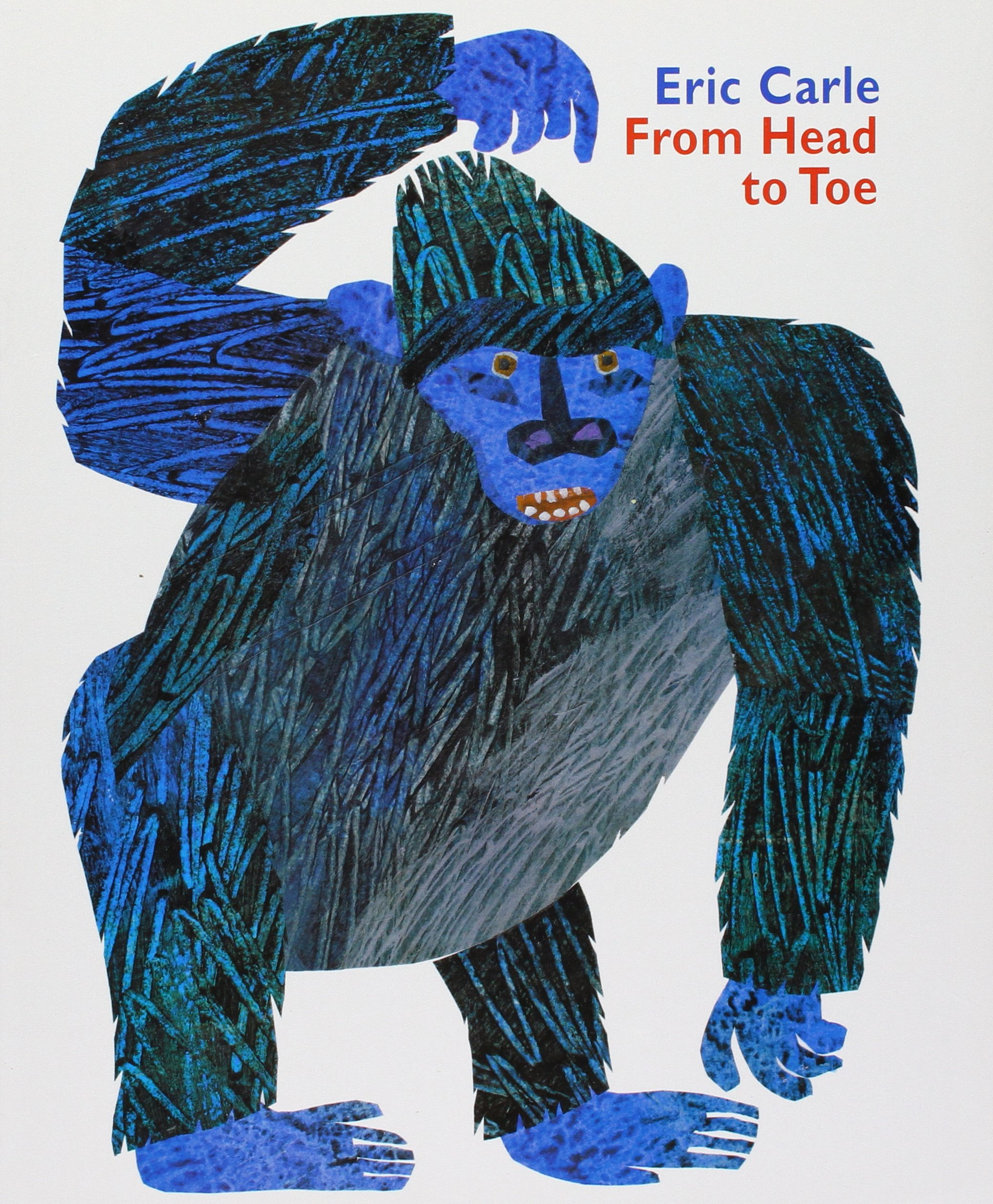 Little Books: From Head to Toe, Grade 1 (Trophies) by HARCOURT SCHOOL PUBLISHERS