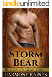 Storm Bear (Return to Bear Creek Book 5)
