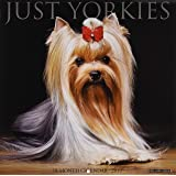 Just Yorkie Puppies 2019 Wall Calendar (Dog Breed Calendar