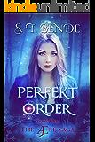 Perfekt Order (The Ære Saga Book 1) (English Edition)