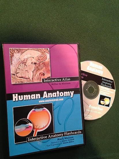 Amazon.com: Human Anatomy Interactive Atlas and Falshcards CD by ...