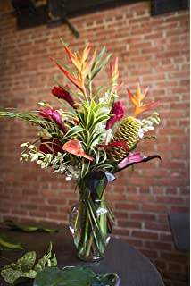 Wisconsinmade Flower Bulb Gift Of The Month Ships November Through