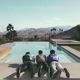 Book Cover: Happiness Begins