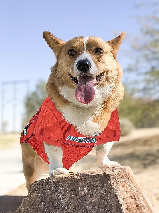 University of Arizona Wildcats Dog Bandana 5 sizes XS XL