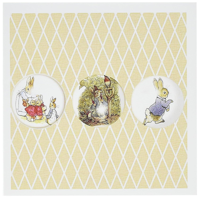 Amazon 3drose Peter Rabbit And Friends Stories Vintage Art